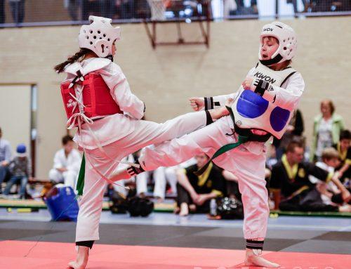 Budo Ryu: clubkampioenschappen 2017